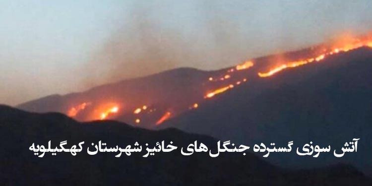 آتش سوزی گسترده جنگلهای خائیز شهرستان کهگیلویه را فراگرفت