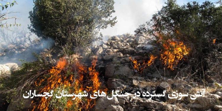آتش سوزی گسترده در جنگلهای شهرستان گچساران ادامه دارد