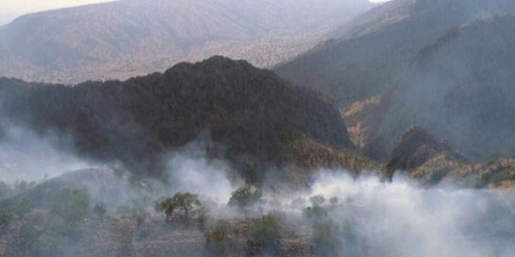 آتش شوزی جنگل ۱۰