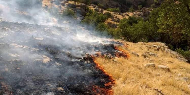 آتش سوزیهای جنگلها و مراتع ایران