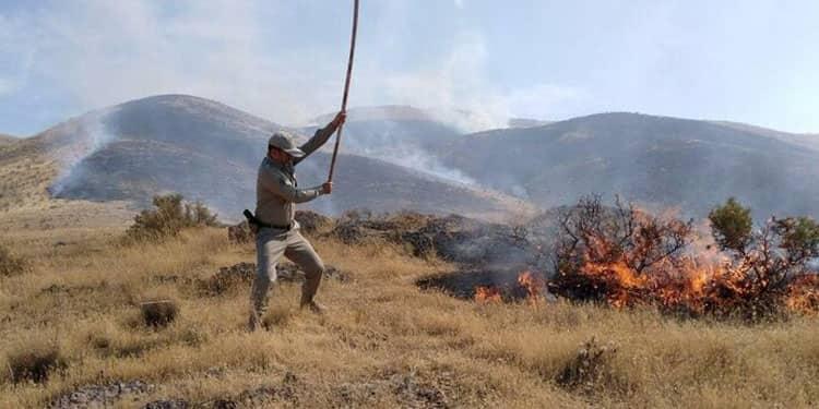 آتش سوزیهای جنگلها و مراتع ایران2