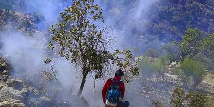 آتش سوزیهای جنگلها و مراتع ایران8