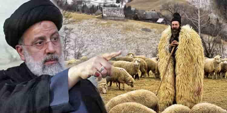 کشک و پشم چوپان طوفان زده یا یک میلیون مسکن ابراهیم فلک زده